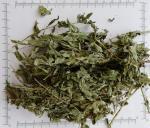 Peppermint Leaf ,Peppermint leaf Teabag Cut,Peppermint powder & extract