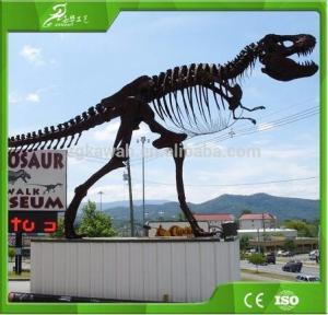 China KAWAH Artificial Simulation Dinosaur Bons and Fossil on sale