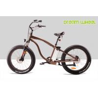 28km / h 350 Watt Electric Beach Bike 36V 10Ah Lithium Battery Pedals Assisted