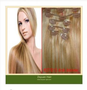 China Human Hair Clip on Hair Extensions (C-017) on sale