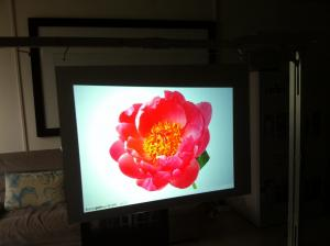 China High Contrast Projection Film for Cinema&Advertising Display/HD Rear Projection Film on sale