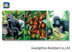 High Definition 3D Animation Picture Chimpanzee Pattern Flipped Wall Decorative Photos