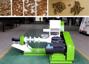China Small Fish Pellet Extruder Animal Feed Pellet Making Machine 30 Kg/H 40 Kg/H on sale