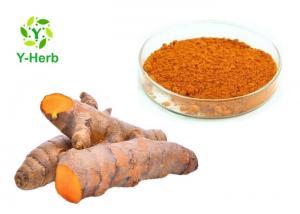 China USP Grade Curcuma Longa Root P.E. Turmeric Extract Bulk Curcumin Powder 95% 98% on sale
