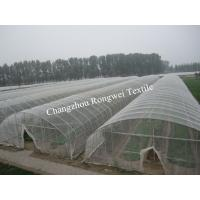 UV Stabilized 50 Gsm Transparent Hail Guard Netting To Protect Fruits
