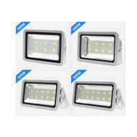 China Water Proof IP65 Led Football Field Lighting With Super Brightness Chips on sale
