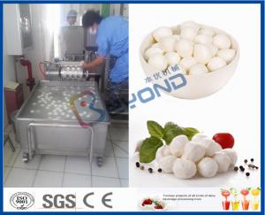 China EC 10TPD Soft Cheese Making Equipment For Cheese Making Factory / Cheese Making Plant on sale