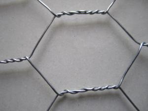 China 20 gauge Poultry Weaving Hexagonal Wire Netting Electro Galvanized with 25mm on sale