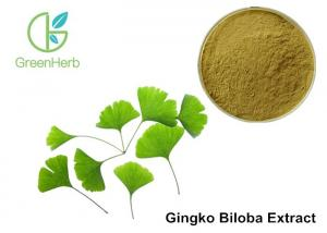 China Low Ginkgolic Acid Ginkgo Biloba Leaf Extract Powder For Dilate Blood Vessels on sale