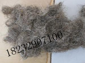 China curled horse hair for mattress filling,horse tail hair for bed.black curled horse tail hair on sale