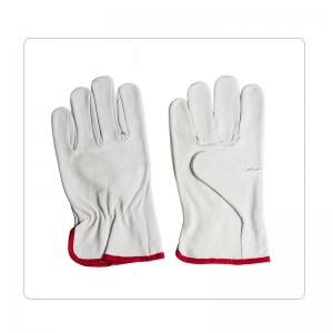 China Personal Protective Jersey Lining Leather Safety Gloves on sale