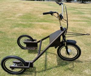 China Electric Dog Trike,Electric Tricycle,Dog Trike, Dog Tricycle on sale