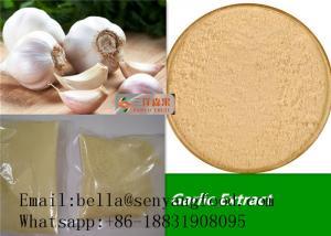 China New crop HALAL KOSHER standard garlic powder china garlic manufacture on sale