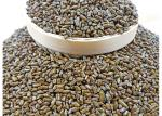 Cassia Seed Roasted Seeds And Nuts Bulk Packaging Selected Large Particles