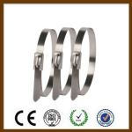 Double Loop Self Locking Stainless Steel Cable Ties Non Flammable Corrosion Resistance
