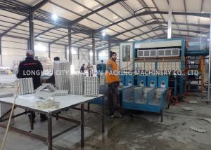 China Pulp Molding Process Paper Egg Tray Machine Capacity 6000PCS / H on sale