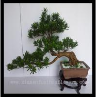 China Hot Sell Artificial Bonsai Tree on sale