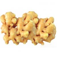 China Chinese ginger wholesale, provide fresh ginger for ginger buyers, 100g up on sale