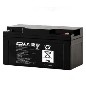 China 65ah solar panel battery, deep cycle agm battery for solar and wind system on sale