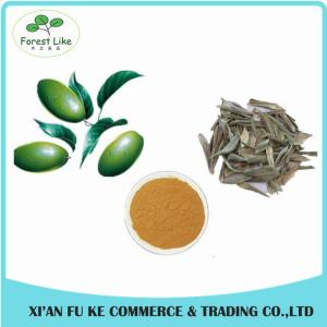 China China Made Only Plant Extract Natural High Quality Olive Leaf Extract Powder on sale