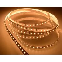 Epistar SMD RGB Led Tape Light Colour Changing 12W/M With 5 Meters , FPC Body Material