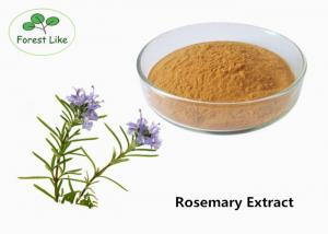 China Food Grade Rosemary Plant Extract Powder Rosmarinic Acid 10% Yellow Brown on sale