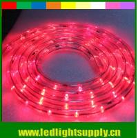 China different color glue flexible led rope 1/2'' 2 wire duralight 12/24v lights on sale