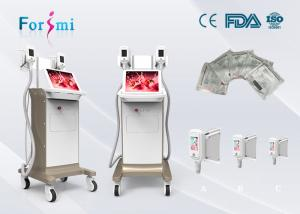 China hot sale 4 Cryo Handle Fat Freeze belly fat removal low price weight loss machine on sale