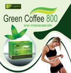 Потеря веса уменьшая зеленый кофе/кофе 800 зеленого цвета