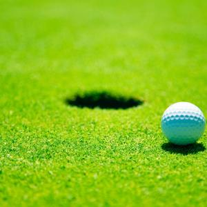 China golf green_fake grass_synthetic putting turf_synthetic grass on sale