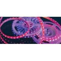 China High Lumen Single Color & RGB 12V Flexible Led Strip Lighting , 30LEDS/M With CE RoHS on sale
