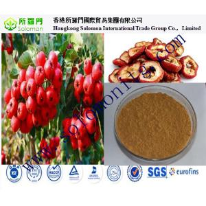 China China manufacturer of hawthorn extract free samples on sale
