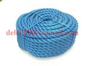 China Nylon solid braided rope,Nylon braided rope,Nylon double braid rope on sale