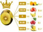 plus doux et plus aromatique dans la saveur le kiwi d'or du zhi de Zhou en Chine