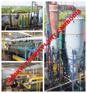 China Wood chips gasification power plant on sale