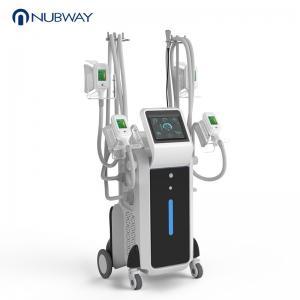 China 2019 China manufacturer four cryolipolysis machine for sale/criolipolisis machine cryolipolysis on sale