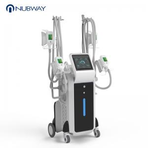 China Coolsulpting handles cryolipolysis body shaping slimming machine on sale