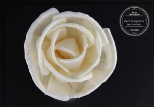 China Pink / White Rose 10cm Fragrance Diffuser Dried Dried Sola Flowers For Office on sale