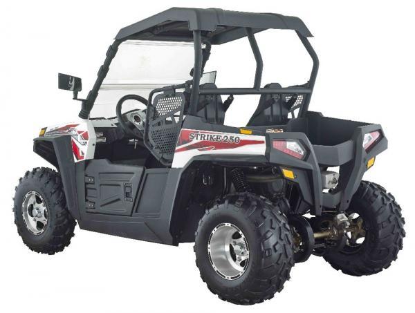 Strike UTV 250CC full size EFI high quality sales germany