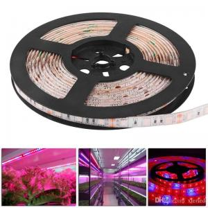China Waterproof 5050 Flexible LED Grow Strip Light Red and Blue 5:1 Aquarium Greenhouse Hydroponic Plant Growing Tape Lamp on sale