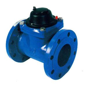 China DN 50 / DN 200 Smart Water Meter Removable Woltman Water Meter With Turbine on sale