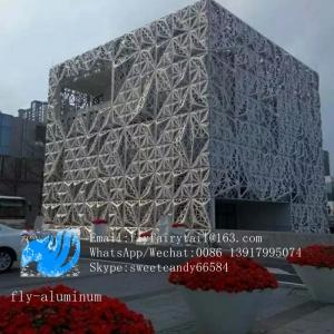 China Punching special-shaped plate, hollowed curtain wall, door ceiling, screen ceiling, aluminum ceiling flower on sale
