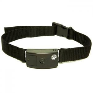 China high quality leather pet dog collar for wholesale GuangZhou supplier on sale