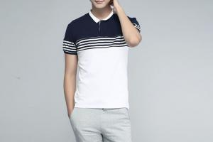 China Auto Double Pique Mens Polo Shirts , Cotton Striped Polo Shirt  Short Sleeve on sale