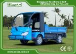 Blue Color Two Seater Electric Utility Car With 7.5KW 48V Trojan Battery