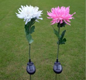 China 1Led Solar Powered Garden LED Stake Lights, Chrysanthemum Solar Light Yard Decorations on sale