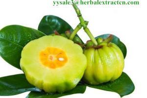 China Garcinia Cambogia Extract,  HCA 60%, Garcinia peel Extract, Chinese manufacturer, Shaanxi Yongyuan Bio on sale