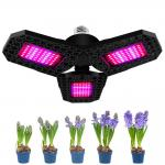 Foldable E27 E26 8000lm LED Grow Light For Seedlings Flower Hydroponic