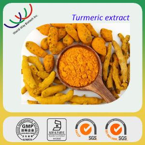 China GMP factory sales high quality 95% curcuminoids curcumin extract on sale