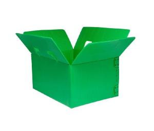 China Corrugated Plastic Box/Corflute Box/ Mail Tray Collapsible corrugated plastic packing box on sale